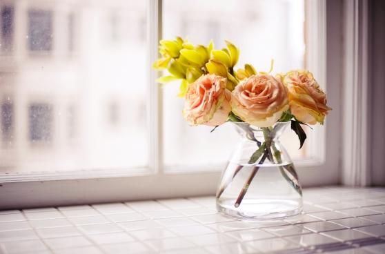 roses-vase-window-flower-petals